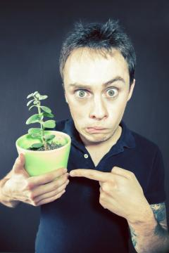 le-drole-de-clip-de-sully-et-lily-la-plante